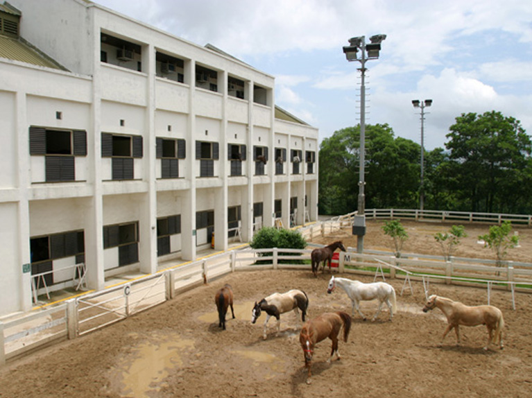 Lei Yue Mun Public Riding School