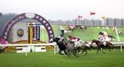 圖1、2、3:<br> 莎莎婦女銀袋(讓賽)在第七場上演,由杜滿萊策騎的 「包裝鬥士」(11號)勝出這場1800米香港三級賽。