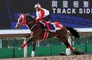 大賽波士 - 浪琴表香港一哩錦標