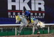 歌爾達 - 浪琴表香港短途錦標