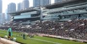 2015元旦好運1月1賽馬日吸引眾多馬迷進入沙田馬場觀賽。