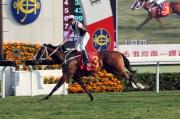 圖一, 二, 三<br> 四歲馬系列首關賽事香港經典一哩賽今日於沙田馬場舉行,由告東尼訓練、郭能策騎的「美麗大師」(3號馬),輕鬆勝出此項1600米香港一級賽。