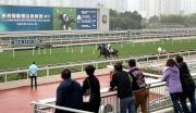 圖 5, 6, 7:<br> 今晨的拍賣馬匹試跑示範吸引了一眾馬主、練馬師及其他來賓到場觀看。