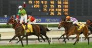 香港代表「夢仙」(4號馬)勝出今日於澳門仔馬場舉行的澳港盃。