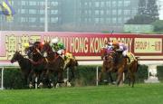 香港賽駒「夢仙」(白帽)、「好精神」(橙帽)、「得盛」(黑帽) 及「好健康」(黃帽) 在今屆澳港盃中跑入前四名。