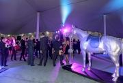 愛彼女皇盃派對2015今晚(4月24日)在跑馬地馬場舉行。