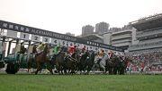 圖1, 2, 3, 4, 5, 6 : 一眾國際頂級良駒今日在沙田馬場角逐本年度愛彼女皇盃(國際一級賽2000米)。香港代表「將男」(3 號馬)在騎師郭能胯下,勝出此場總獎金達二千萬港元的賽事。