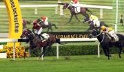 圖1, 2:<br> 由約翰摩亞訓練、郭能策騎的「喜蓮歡星」(7號馬),以一放到底姿態,率先衝過終點,勝出今日於沙田馬場舉行的皇太后紀念盃。「文藝復興」(11號馬)於此項途程2400米的香港三級賽讓賽中跑獲第二名。