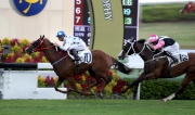 Photo 1, 2, 3<br> John Size-trained Contentment (No. 10), ridden by Joao Moreira, holds Beauty Only to win the Oriental Watch Sha Tin Trophy (HK Group 2, 1600m) at Sha Tin Racecourse today.