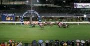 圖11, 12, 13, 14<br> 第七場賽事,南非代表雷景勳策騎「威先生」(8號)掄元,攻下浪琴表國際騎師錦標賽第三關。