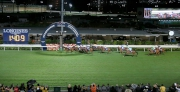 圖15, 16, 17, 18<br> 浪琴表國際騎師錦標賽尾關在第八場上演,南非代表雷景勳策騎「駿將」(8號)勝出。