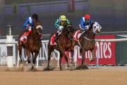由鄭俊偉訓練的「好好計」(黃帽)夥拍騎師巫斯義,在美丹馬場的北風錦標(泥地1200米) 取得季軍。