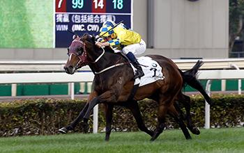 寶馬香港打吡大賽今日於沙田馬場舉行,由約翰摩亞訓練、布文策騎的「明月千里」(2號馬、黃色綵衣)於賽事末段力壓廐侶「凱旋生輝」(9號馬、灰色/深藍色綵衣),勝出此項香港一級賽。