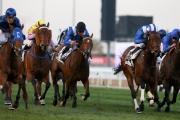 「幸福指數」(黃帽) 在一級賽阿喬斯短途錦標跑入一席季軍。是賽頭馬「緩衝之計」(左) 及亞軍「傲天駿」(右二) 均已報名角逐稍後在香港舉行的一級賽主席短途獎。