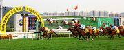 圖1, 2, 3: 由約翰摩亞訓練的香港賽駒「飛來猛」(6號馬),由潘頓策騎勝出今日於沙田馬場舉行的香港三級賽港澳盃。亞軍為「阿方索」(9號馬)。