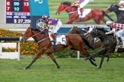 「東方快車」(5號馬) 前仗在田泰安胯下勝出一項途程2000米的第三班讓賽。