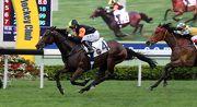 圖一、二: 見習騎師蔣嘉琦夥拍告達理馬房的「閃電王」勝出今日第八場賽事北京會所週年盃(讓賽),這亦是蔣嘉琦今日所獲的第四場頭馬。