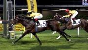 維多利亞賽馬會錦標今晚在跑馬地馬場舉行,由呂健威訓練、韋達策騎的「軍火」(5號) 勝出這項1800米第一班賽事。