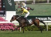 「明月千里」憑著勝出2016年愛彼女皇盃,在浪琴表世界馬匹排名中並列第三位。