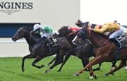 圖1, 2<br> 由高伯新訓練的香港賽駒「大運財」(金衫紅點),今日 (6月18日) 在蘇銘倫胯下於雅士谷馬場角逐一級賽鑽禧錦標 (草地1200米),結果僅不敵頭馬「晨光男兒」,跑入一席出色的亞軍。