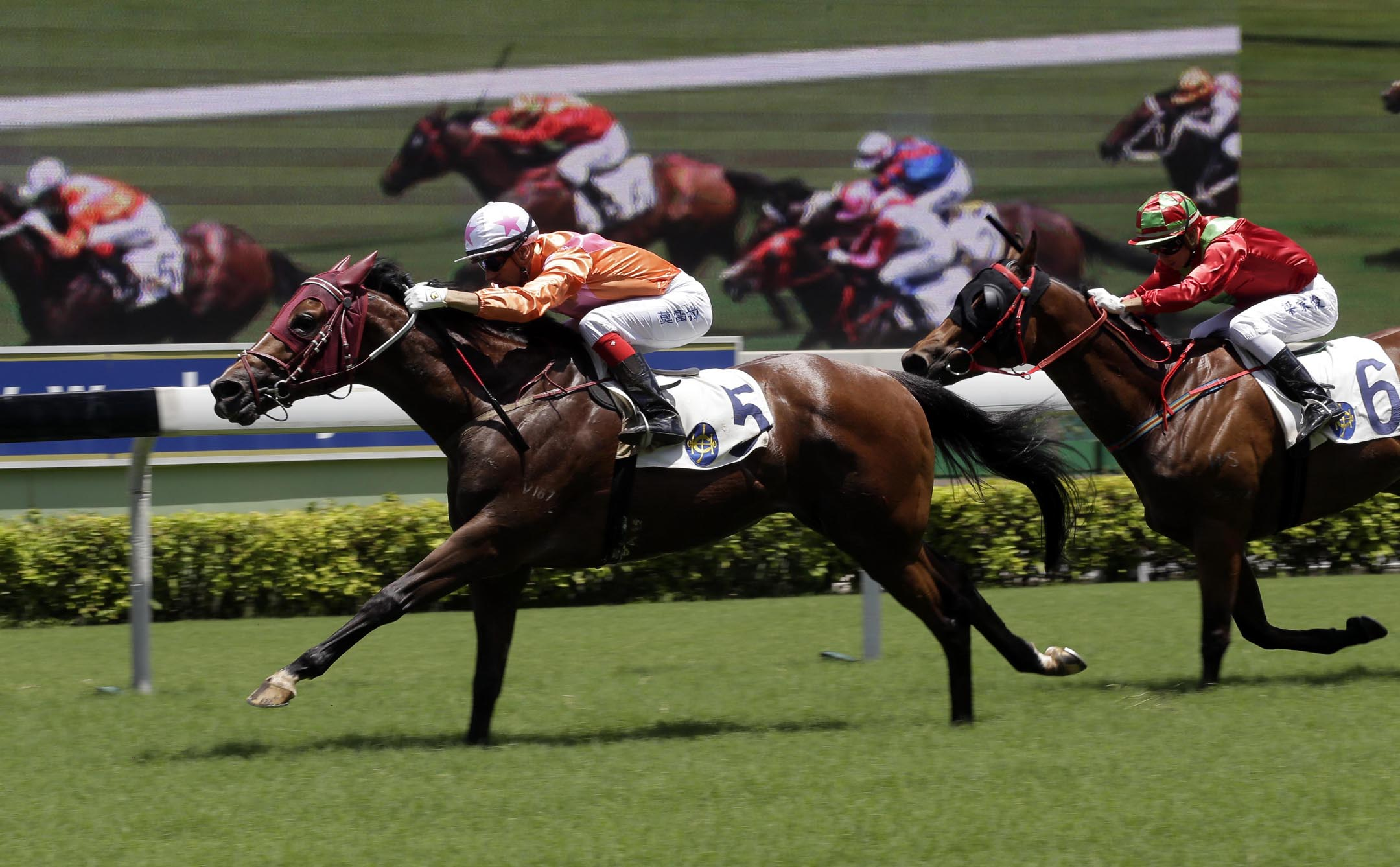 Helene Paragon sets a course record for 1800m at Sha Tin when winning the HKG3 Premier Plate last season.