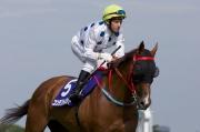 圖1, 2: 一級賽安田紀念賽今日於日本東京競馬場舉行,由蔡約翰訓練的香港賽駒「詠彩繽紛」(5號馬),於柏寶胯下以第十二名過終點。勝出此賽的為主隊賽駒「標誌名駒」(6號馬)。