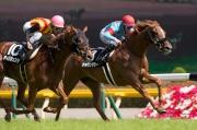 香港賽馬會錦標亦於今日在東京競馬場舉行,由杜滿萊策騎的賽駒Sakuntala(內),力壓Dirigente(10號馬)勝出此賽。