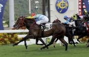 圖五, 六<br> 羅理雅策騎由葉楚航訓練的「隨心隨意」(1號) 勝出本年度馬季最後一場賽事香港馬主協會錦標。