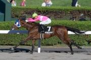 莫雷拉在今日札幌競馬場的尾場賽事夥拍Sakura Empire贏得頭馬。