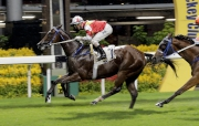Victory Marvel opens his account at Happy Valley two weeks ago with Zac Purton on board.