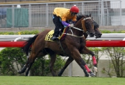 Peniaphobia passes the post first under Matthew Chadwick at Tuesday��s Sha Tin barrier trials.