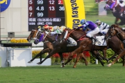 Lotus Breeze (white and yellow cap) snatches the Sunning Handicap (Class Three, 1200m) for trainer Chris So and jockey Joao Moreira.