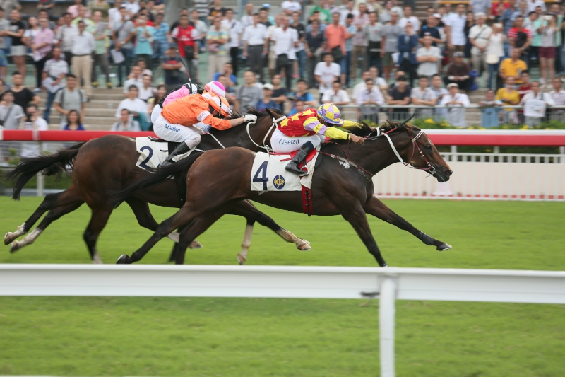 John Moore-trained Design On Rome (No. 4), ridden by Karis Teetan, edges Blazing Speed (No. 2) to win the Oriental Watch 55th Anniversary Sha Tin Trophy (Group 2, 1600m) at Sha Tin Racecourse today.