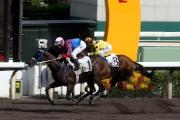「準備就緒」有機會成為歷來第二匹參戰美國育馬者盃賽事的香港賽駒。