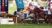 「大印銀紙」於董事盃中取得其在港首場一級賽頭馬。