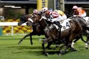 由約翰摩亞訓練、莫雷拉策騎的「活力歡騰」(4號馬),勝出今晚於跑馬地馬場舉行的香港鄉村俱樂部挑戰盃(第一班,1650米)。