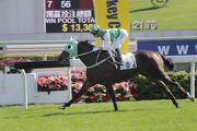 「巴基之星」今日於沙田以輕鬆姿態摘下新馬錦標。