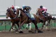 浪琴表香港一哩錦標參賽馬「步步友」(黑色綵衣)今晨於沙田一組1200米泥地試閘中後上跑第二。另一匹香港一哩錦標參賽馬 – 由蔡約翰訓練的「詠彩繽紛」(白色綵衣)- 則以第三名過終點。