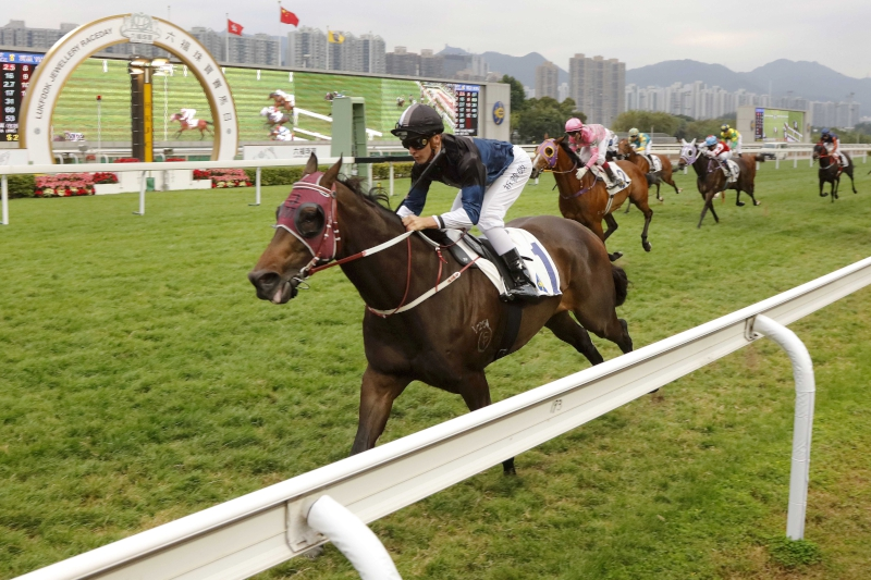 Bad Boy lands a stylish victory down the Sha Tin straight course in the Lukfook Jewellery Cup last start.