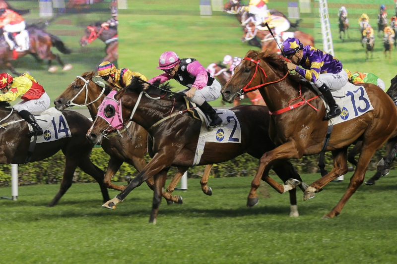 Beauty Generation (No. 2) holds off the challenge of Western Express (outside) to win a Class 2 handicap over 1600m last start.