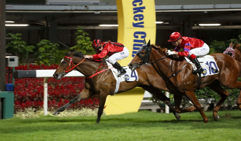 Dinozzo (No. 4) opens his Hong Kong account at Happy Valley two starts back.