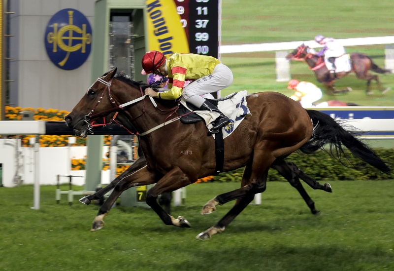 Derby entrant Booming Delight scores a narrow win in the Pearce Memorial Challenge Cup last start.
