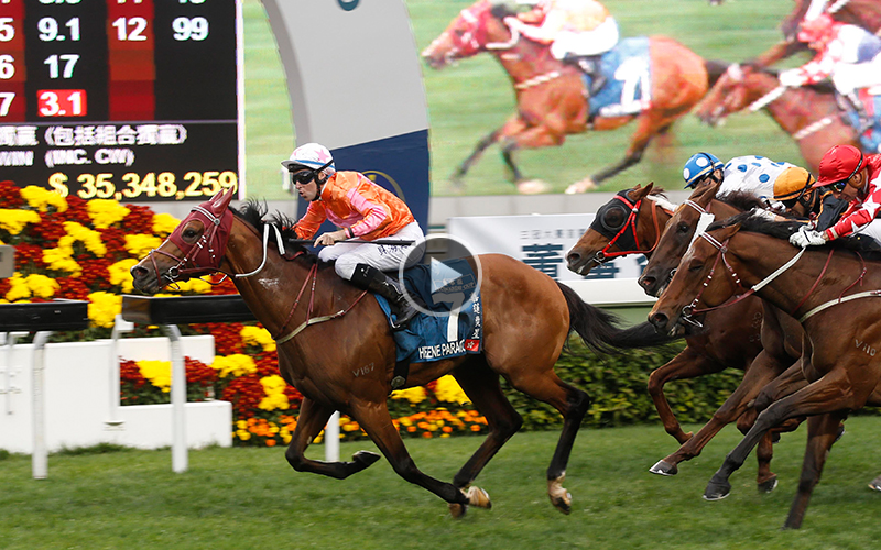 >Helene Paragon lands the Stewards' Cup