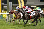 「得意繽紛」(內側)在潘頓力策下僅勝韋達(紅帽)策騎的「獻惑」,為練馬師蔡約翰取得在香港從練以來第一千場頭馬。