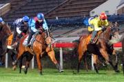 「佳龍駒」(藍紅綵衣) 今早在沙田的1000米試閘中以第五名衝線。