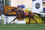 「佳龍駒」上仗在莫雷拉胯下勝出香港經典一哩賽。