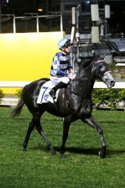 「包裝騎士」與史卓豐贏馬後返回凱旋門。
