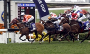 1, 2, 3<br>The John Moore-trained Helene Paragon (Horse No.2), with Tommy Berry on board, takes the G1 Queen's Silver Jubilee Cup (1400m) at Sha Tin Racecourse today.
