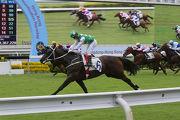 出自去年香港國際馬匹拍賣會的「巴基之星」,上季在港一出即勝,表現令人留下深刻印象。