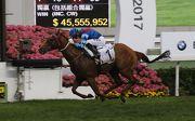 圖九, 十, 十一, 十二<br> 寶馬香港打吡大賽今日於沙田馬場舉行,由約翰摩亞訓練、莫雷拉策騎的「佳龍駒」(1號馬)擊敗「巴基之星」(3號馬),囊括四歲馬經典賽事系列三關賽事。